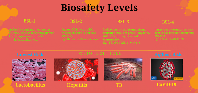 A brief introduction to Biosafety Levels