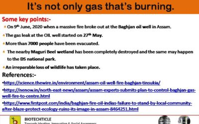 Baghjan oil well inferno:  It's not  only gas that's burning